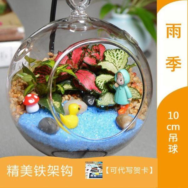 微景觀生態瓶迷你綠植盆栽diy苔蘚植物創意玻璃瓶室內小屋盆景【快速出貨】