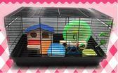 小寵 倉鼠籠子 基礎籠DIY 可搭配 超大空間養鼠 金絲熊類【萬聖節全館大搶購】