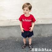 嬰兒短褲子男童裝中褲3歲1小童寶寶兒童薄款潮『快速出貨』
