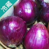 車城紫色洋蔥500G/袋【愛買冷藏】