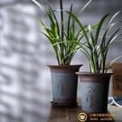 宜興紫砂蘭花盆大口徑君子蘭盆陶瓷蘭帶托盤超級品牌【小獅子】