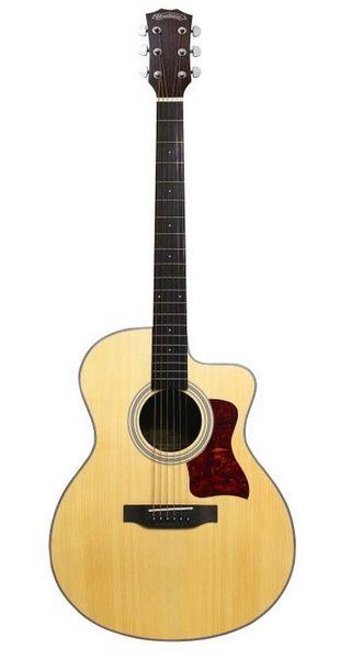 【金聲樂器廣場】Woodtone吉他 旅行系列 TR-4 單板