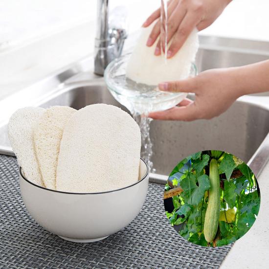 廚房專用絲瓜清潔刷 鍋具 碗碟 洗碗 衛生 乾淨 水槽 刷子 洗鍋 不沾油【H034-1】米菈生活館