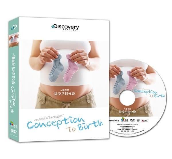 Discovery人體奇航 從受孕到分娩 DVD(購潮8)