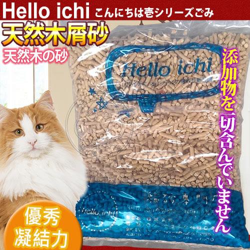 【 zoo寵物商城】國際貓家Hello Ichi 》天然松木屑貓砂10L(5KG)/包