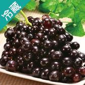 【美國】熱銷黑無籽葡萄(500G±5%)/盒【愛買冷藏】