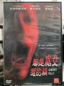 影音專賣店-Y60-011-正版DVD-電影【都是處女惹的禍】-布莉特妮墨菲 麥可賓恩