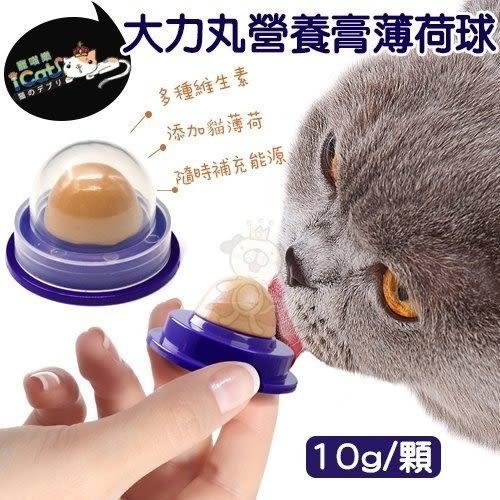*WANG*【大力丸能量球10g】貓零食,舔食玩具,舔舐,貓糖果,固體營養膏,化毛膏