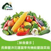 【鮮食優多】花蓮壽豐 當季有機能量蔬菜箱