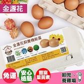 【下單後10-14天出貨】【咱兜ㄟ養雞場】金盞花飼養機能雞蛋 紅殼 40顆宅配禮盒組 10入/4盒 雞蛋