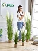 仿真蘆葦草假草盆栽北歐植物裝飾盆景擺件ins風家居室內落地綠植 HM 范思蓮恩