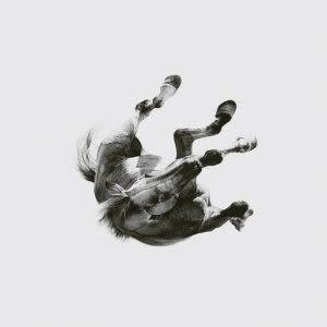 安柏林樂團 黑暗行路光明歸處 CD(購潮8)