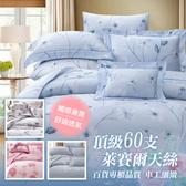 【貝淇小舖】 60支TENCEL天絲 標準雙人床包鋪棉兩用被套四件組~多種款式任選60S