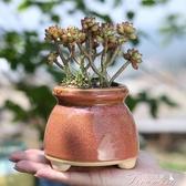 花盆-簡約多肉花盆中大號創意個性多肉盆可愛 提拉米蘇