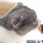 網紅貓糖舔舔樂幼貓成貓大力丸維生素固體營養膏貓咪零食抖音同款 晴川生活馆