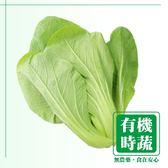 【有機認證生鮮時蔬】廣島菜 (250g ∕ 包)