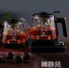 養生壺 蘇泊爾煮茶器家用多功能玻璃電水壺燒茶電熱蒸汽蒸黑茶花茶養生壺 MKS韓菲兒