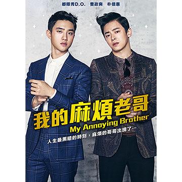 我的麻煩老哥 DVD My Annoying Brother 免運(購潮8)