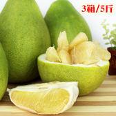 【鶴柚】花蓮鶴岡得獎41年老欉文旦3箱(5斤x3)