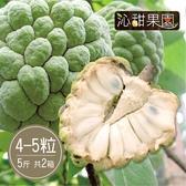 沁甜果園SSN.台東大目釋迦4-5顆裝/5台斤(共2箱)﹍愛食網