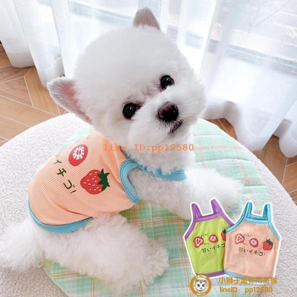 狗狗衣服夏季貓咪寵物博美比熊貴賓雪納瑞柯基泰迪衣服薄款小型犬小狗狗【小獅子】