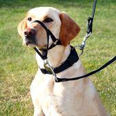 拉布拉多防咬防狗叫狗狗訓練嘴套中大型犬防爆沖寵物口罩防撿垃圾 卡布奇诺