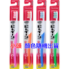 日本 LION獅王 臼齒深潔牙刷 小頭 (顏色隨機出貨) 艾莉莎ELS