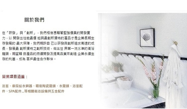【漢森居家 台灣精品】 工業風 消光 啞光黑 淋浴龍頭HS-0004