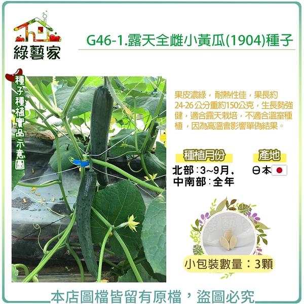 【綠藝家】G46-1.露天全雌小黃瓜(1904)種子3顆