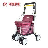 必翔銀髮 菜籃型購物車 F-619N 助步車 購物車 助行器 (可私訊詢問) 【生活ODOKE】