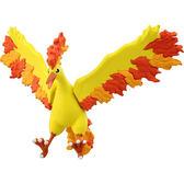 精靈寶可夢 EX EHP_05 火焰鳥_PC11383