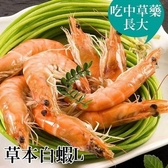 【南紡購物中心】台江漁人港.草本白蝦(L)(半斤/包,共二包)