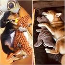 狗狗玩具耐咬磨牙發聲法斗泰迪柯基幼犬金毛大型犬寵物毛絨用品 樂活生活館