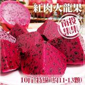 【家購網嚴選】集集農會 特級紅肉火龍果10斤裝(約11-13顆) /盒