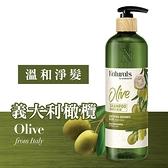 Naturals 橄欖洗髮露490ml