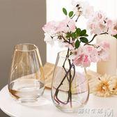 恐龍蛋玻璃花瓶 珠光貝母色花瓶擺件裝飾客廳插花創意花器 遇見生活