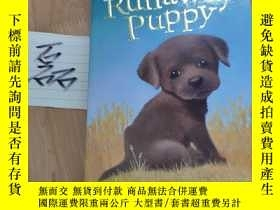 二手書博民逛書店英@Buttons罕見the Runaway Puppy (Holly Webb Animal Stories)奇