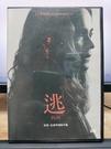 挖寶二手片-P03-384-正版DVD-電影【逃】-莎拉寶森 派特希利(直購價)