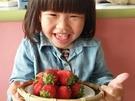 [新竹]採果體驗-親親果農場〔12月-隔年4月草莓、6-9月西瓜〕