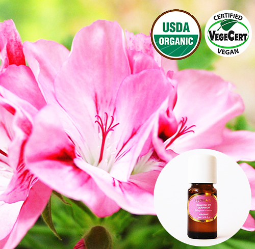 有機精油- 天竺葵  Geranium Organic Essential Oil ~ 美國USDA有機認證