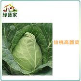 【綠藝家】大包裝B09.仙桃高麗菜種子7.5克(約1900顆)