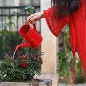 澆水壺家用園藝輕便澆花長嘴壺鐵藝復古