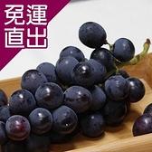 綠安生活 產銷履歷大村網室巨峰葡萄2盒 3斤/盒【免運直出】