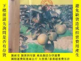 二手書博民逛書店植物保護(雙月刊)罕見1990年1一6期 合訂本 館藏Y2719