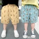 男童短褲 童裝男童夏季休閒五分短褲新款韓版休閒兒童寶寶洋氣滿印中褲 韓菲兒