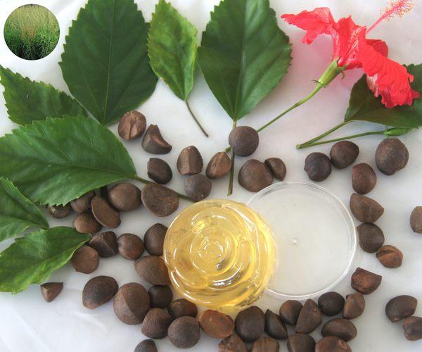 (玫瑰草精油)苦茶油酵素手工皂+旅行裝皂盒