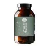曼寧紫錐菊防護茶2g×15入