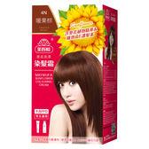 美吾髮葵花染髮霜-4N暖栗棕(40g+60g)