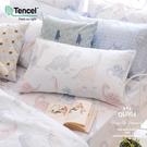 6x7特大雙人床包枕套三件組 【不含被套】【 DR2010 小雷龍 】  230織天絲™萊賽爾 台灣製 OLIVIA