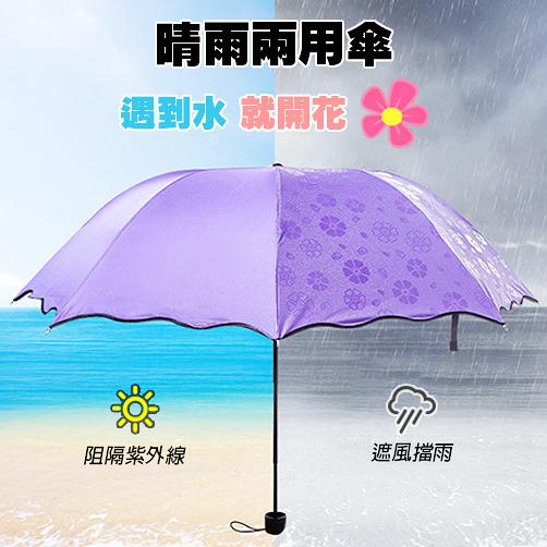 遇水開花傘 新款 100%阻隔紫外線 加厚 黑膠傘 晴雨傘 抗UV 降溫傘